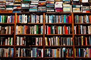 poésie,poèmes,poètes,écriture,vers,jeu,livres